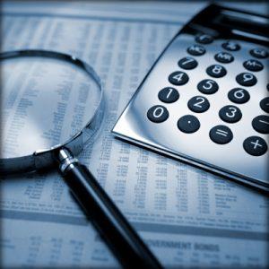 Финансово бухгалтерская экспертиза