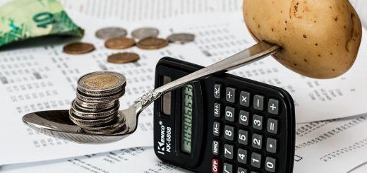 Экспертиза финансовых потерь